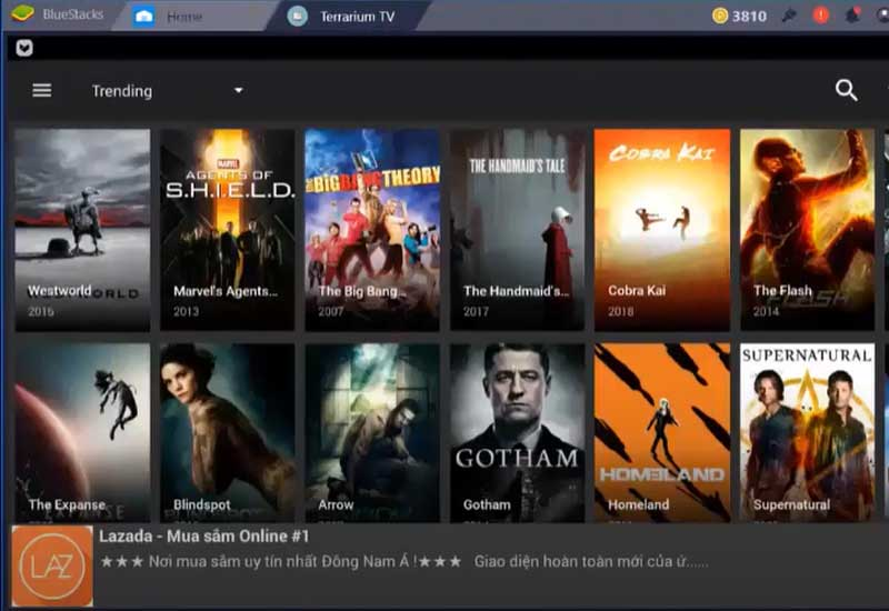download-movies-from-Terrarium-TV
