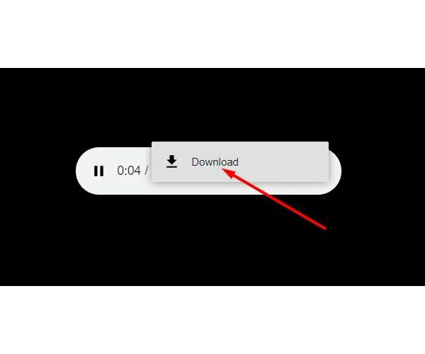 download-mp3-screenshot